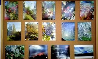 """Фото-изложба на тема """"Всички заедно в едно общество – ръка за ръка """""""